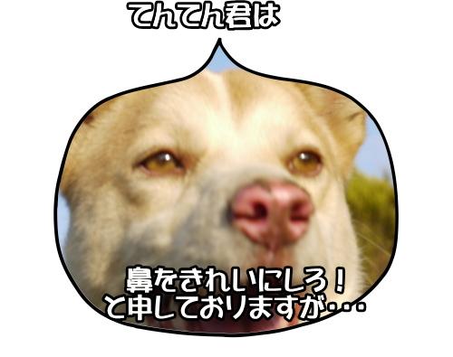 Image8_3